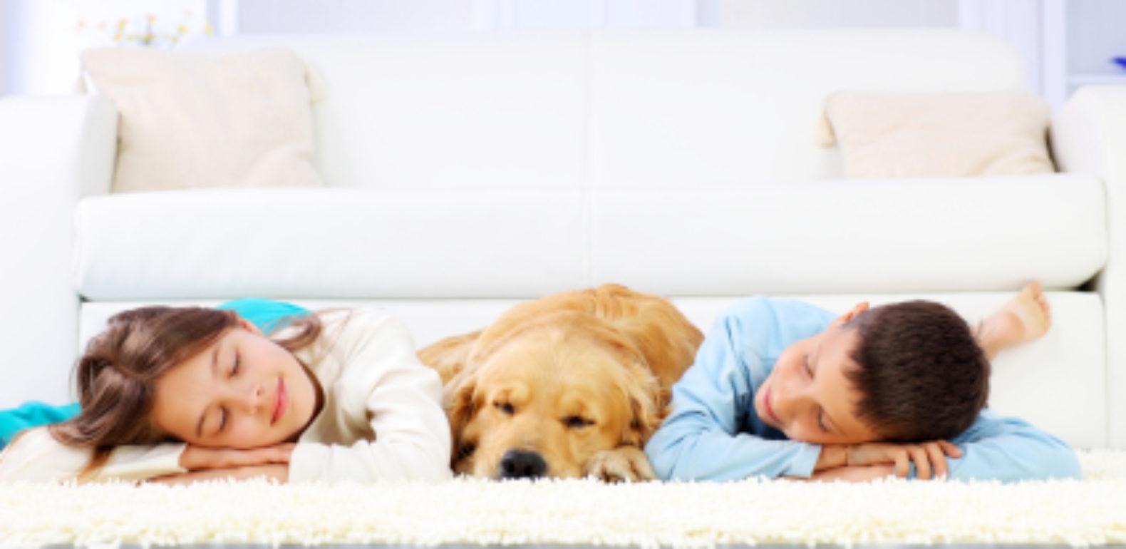 Comment profiter d'une sieste réparatrice ?