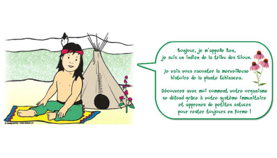 echinacea-enfants