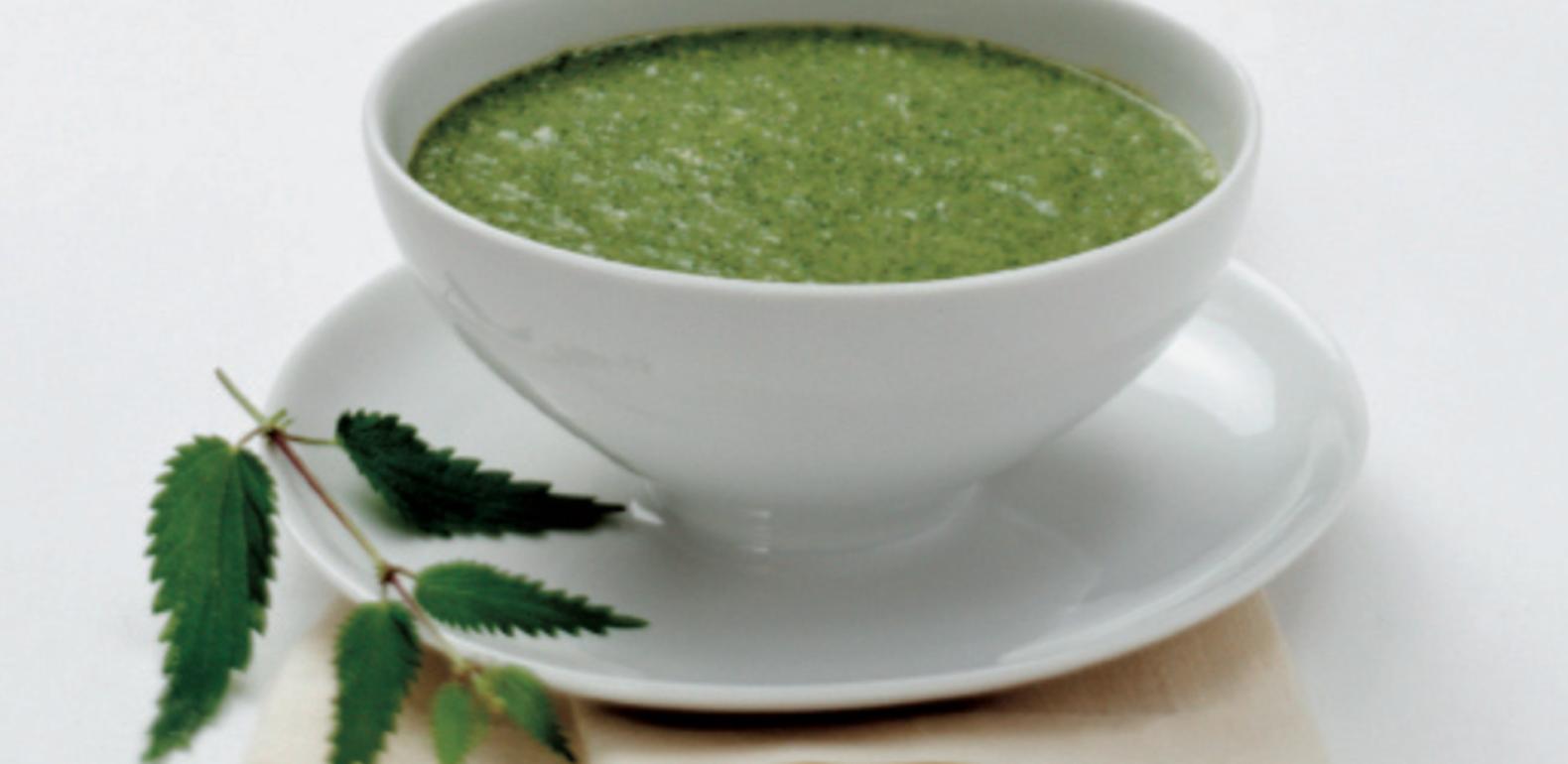 Soupe archives a vogel - Quelles orties pour la soupe ...